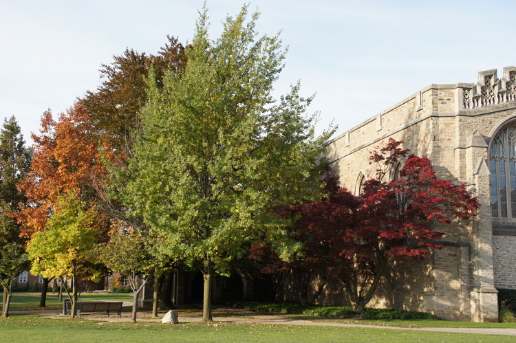 Ridley College, memorial chapel, canadian independent school, private school, Fall weather, leaves changing colour